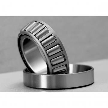 Toyana RNAO45x55x17 Cylindrical roller bearings